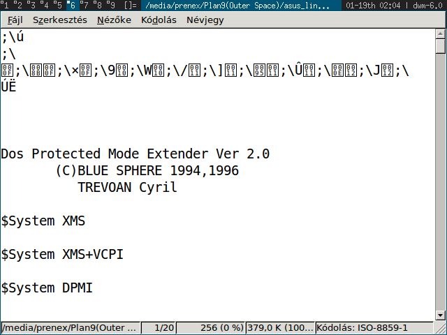 game binary with extender version strings